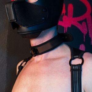 Puppy Masker Zwart met Halsband Zwart/Bruin